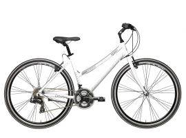 Sport Bicycle Boxter FX Lady