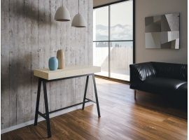 Industrial style console table Hudson